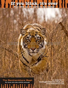 The Ranthambhore Bagh
